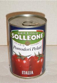20060505solleone.jpg