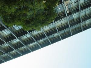 20070201-07.jpg