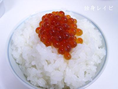20090119ikura_01.jpg