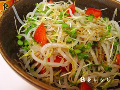 20090910sl-kaiwaremoyashi.jpg