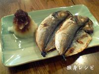 20080104ajihiraki.jpg