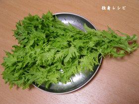 20080413wasabina01.jpg