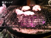 20080420kouei_shibire.jpg