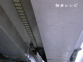 20080428kousoku.jpg